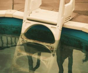 des algues dans ma piscine que faire