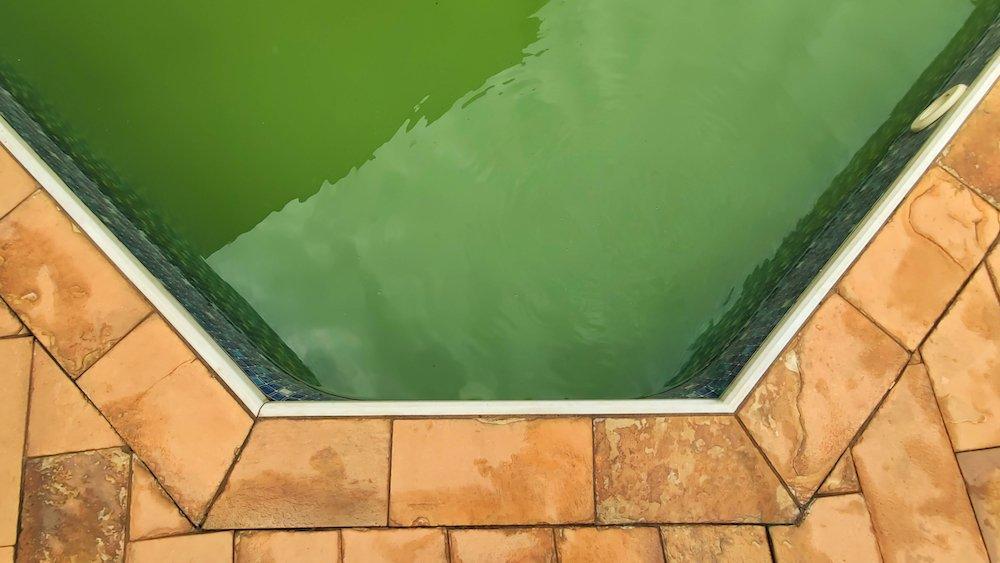 comment_rattraper_eau_piscine_verte